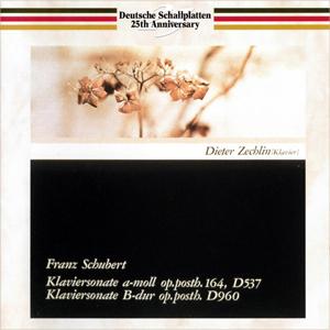 MT_Zechlin-Schubert-D537-D960-DSchallplatten_1.jpg